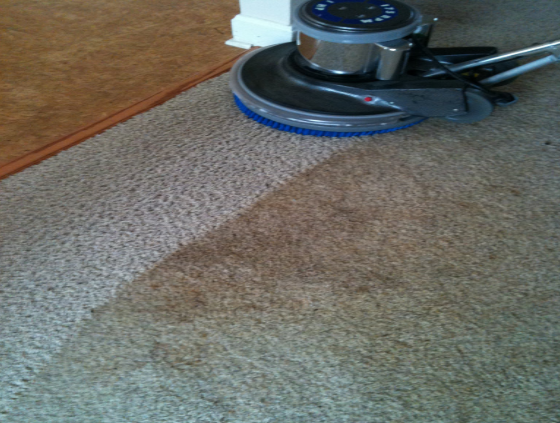 Dirty Carpets